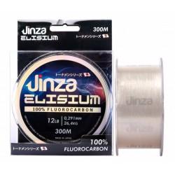 NYLON FLUOROCARBON JINZA ELISIUM 300 MT adcsportshop.com